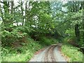 SJ2006 : Check rail on the sharp curve by Christine Johnstone