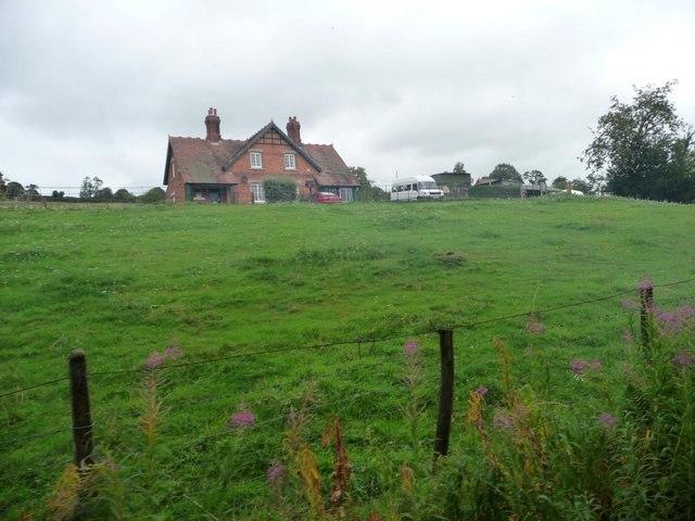 Pasture below Glyn