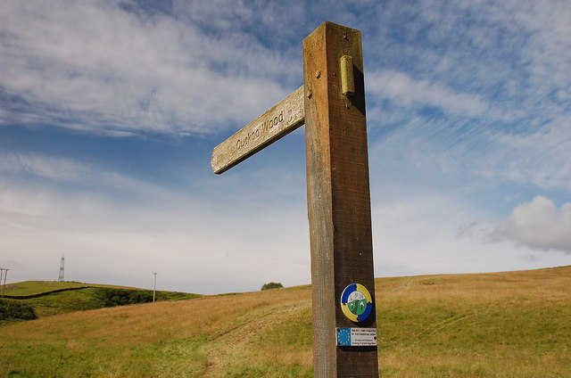 This way to Cuckoo Wood, Lauder Burn