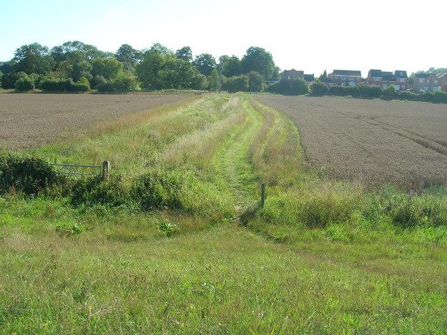 Path towards Barlby