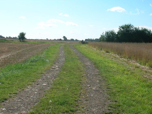 Farm track south of Riccall