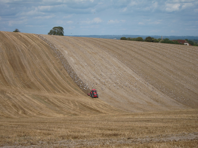 Fertilising the field