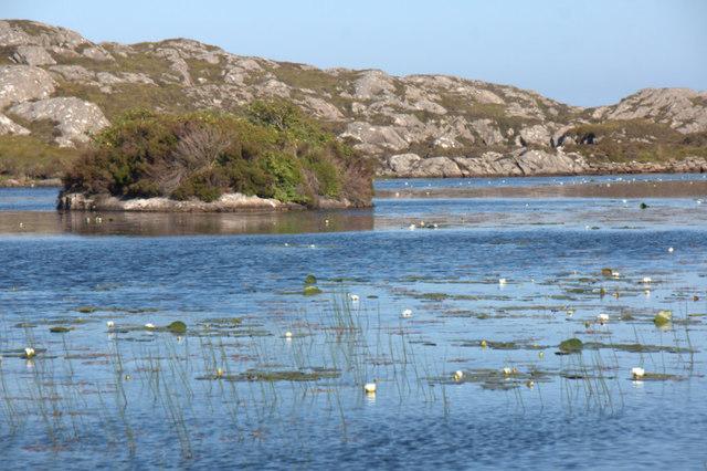 Island in Loch nan Craobhag