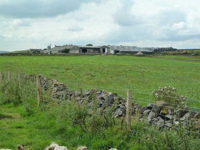 Five Wells Farm