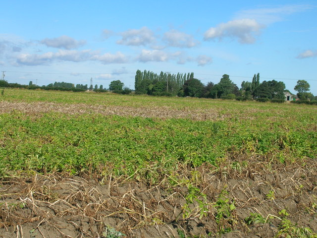 Farmland off Kelfield Lane