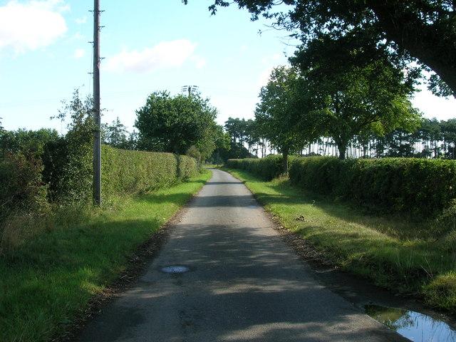 Moor Lane towards Moor Farm