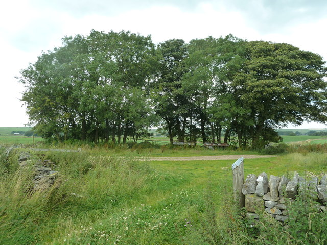 Pasture Barn near Pomeroy