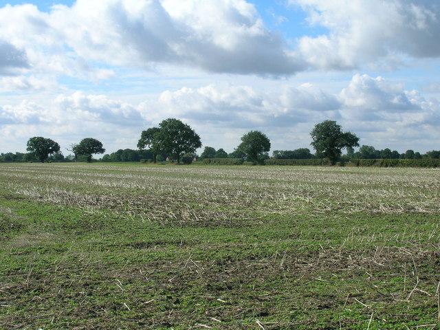 Farmland off Whinny Lane