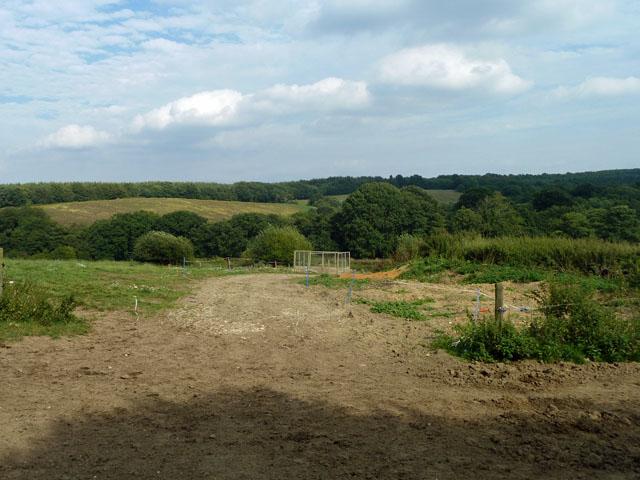 Cattle track, Penn Farm