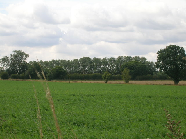 Farmland off the A19