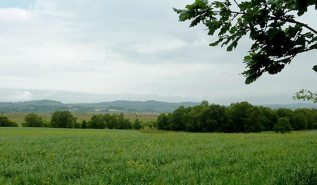 Teifi Valley farm landscape across Cors Caron, Ceredigion