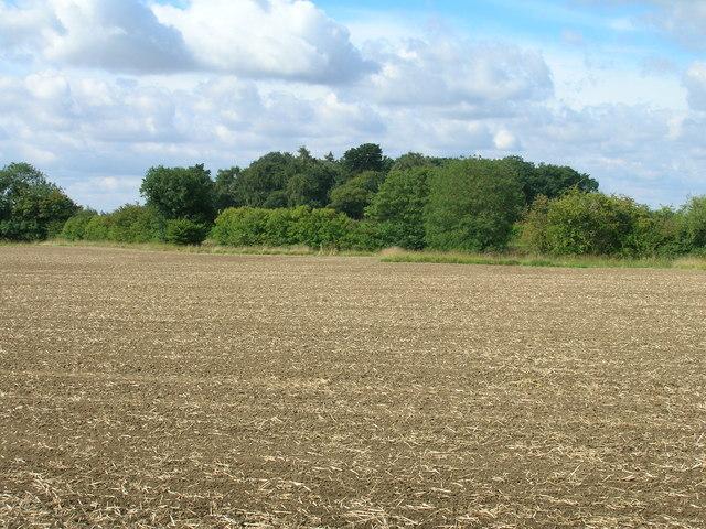 Farmland towards Gamble's Rush