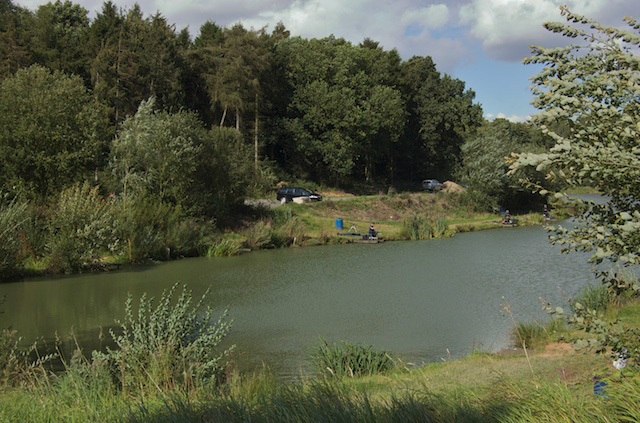 Angling at Risby Park