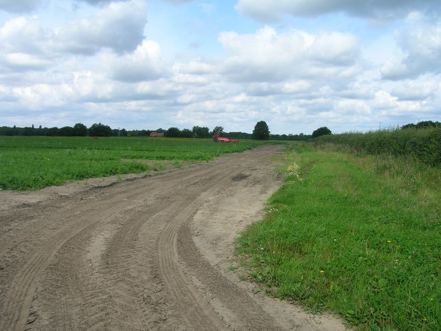 Farm track off Highfield North Lane