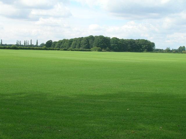Farmland near Winchat Hall