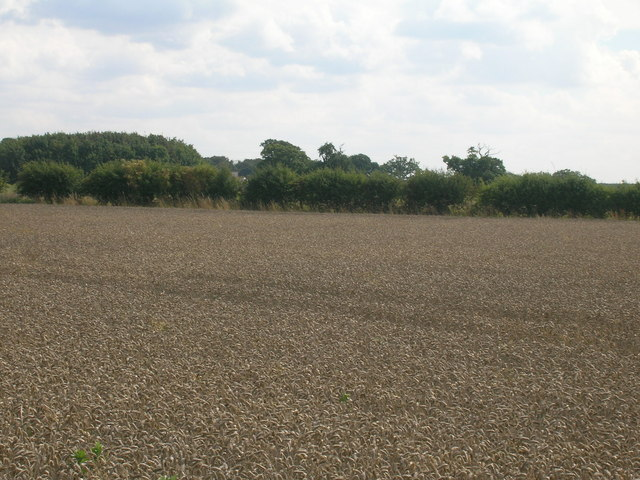 Farmland near Manor Farm