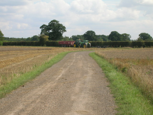 Bridleway towards Common Farm