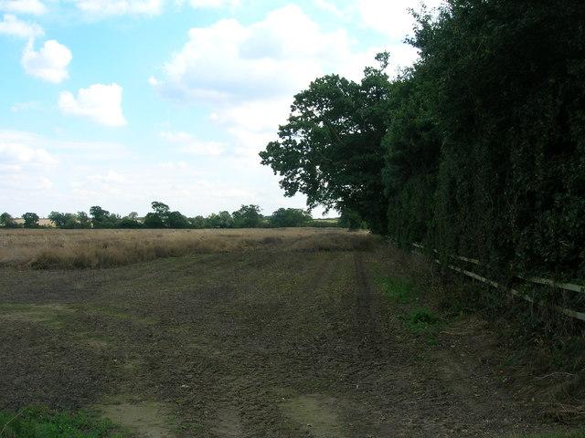Farmland, Spring House Farm