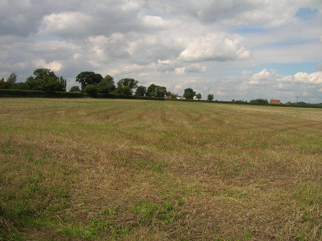 Farmland near the A19