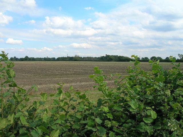 Farmland near Providence House