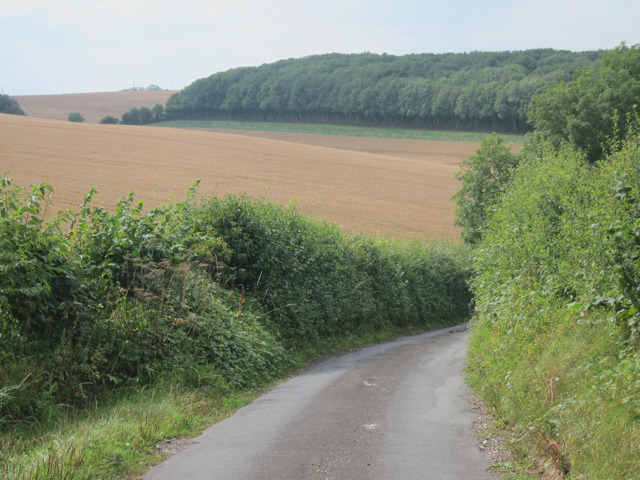 Lone Barn Road