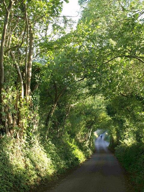 Rowberrow Lane