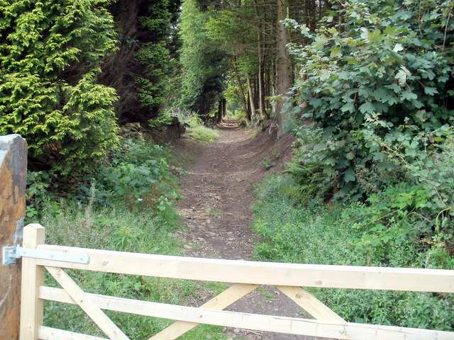 Track from Mountain Road, Caerphilly into woodland