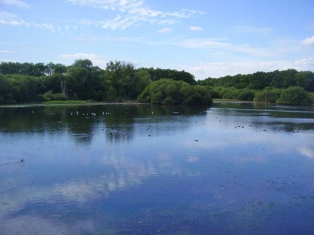 Ravensthorpe Reservoir West of the Causeway