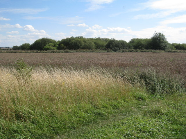 View across part of the site of RAF Wigsley