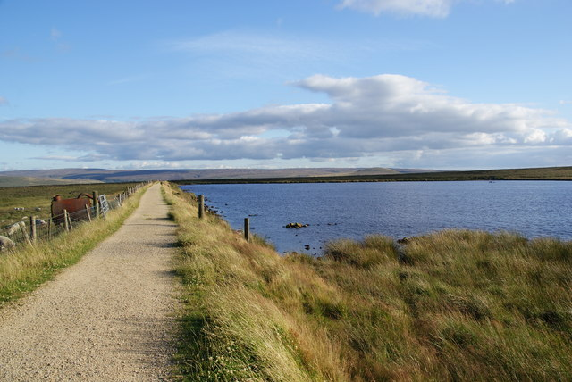 Cupwith Reservoir
