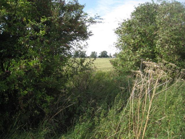 View across Slough Dyke towards Cromwell Lock