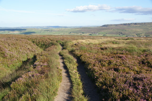 Footpath on Reaps Hill