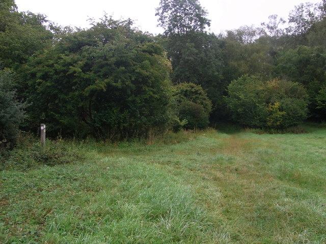 Footpath joins bridleway