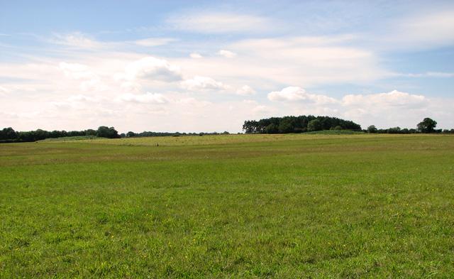 Tumuli west of Swallowpit Plantation, Bircham Tofts
