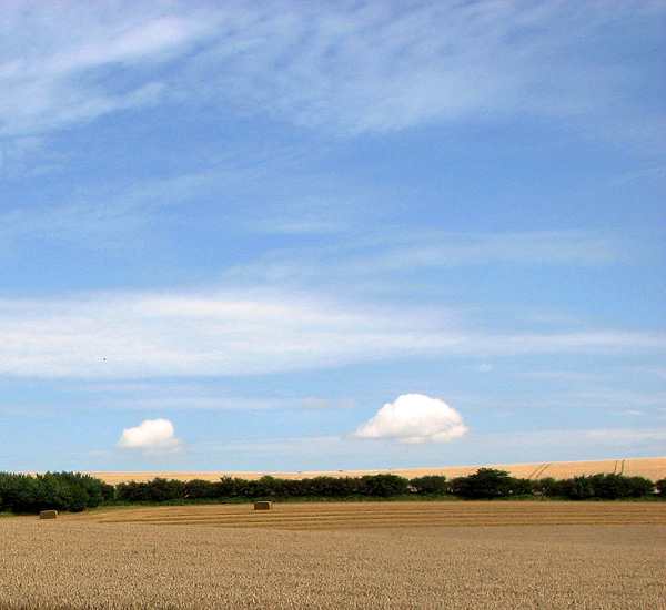 Fields north of Fring Road
