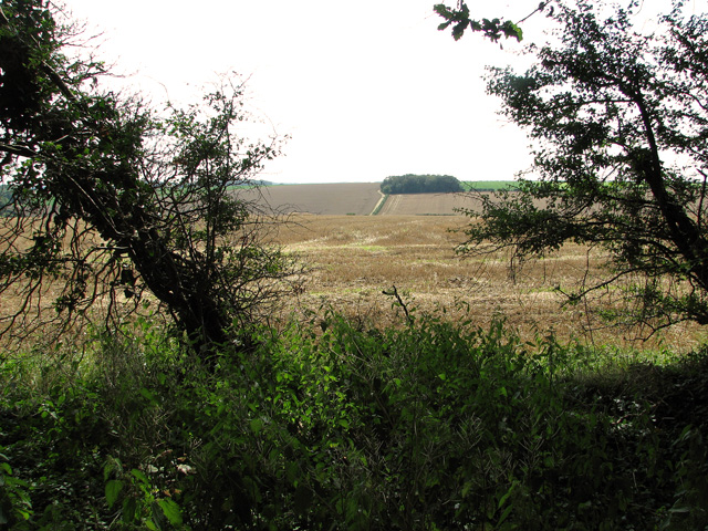 View from Dovehill Wood, Sedgeford