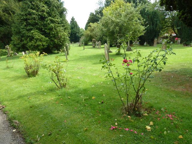 Holy Rood, Holybourne: churchyard (a)