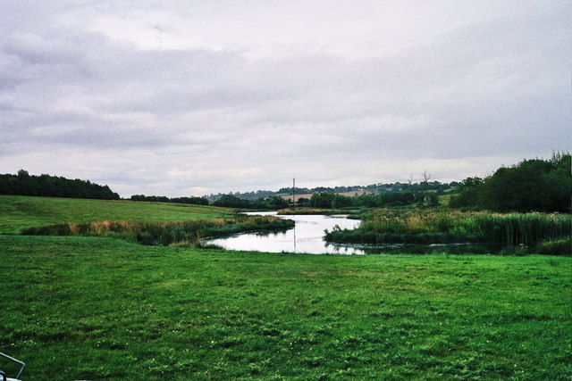 Fish ponds at Leigh Lodge