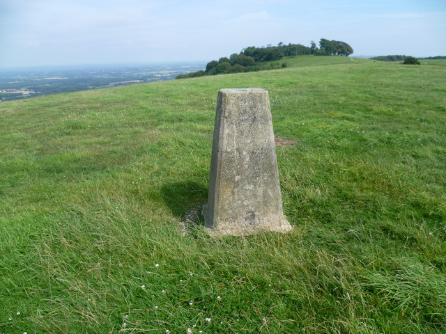 Trig point near Chanctonbury Ring