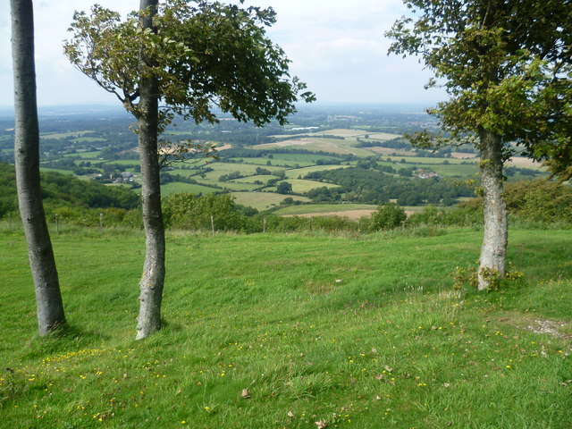 Looking out from Chanctonbury Ring