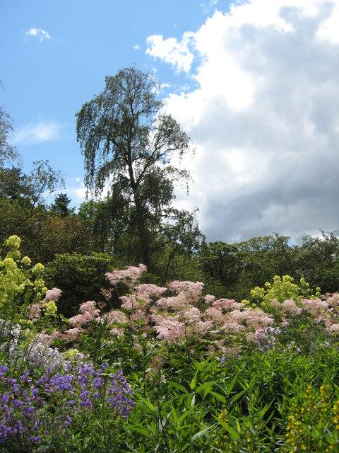 Herbaceous border, Geilston Garden