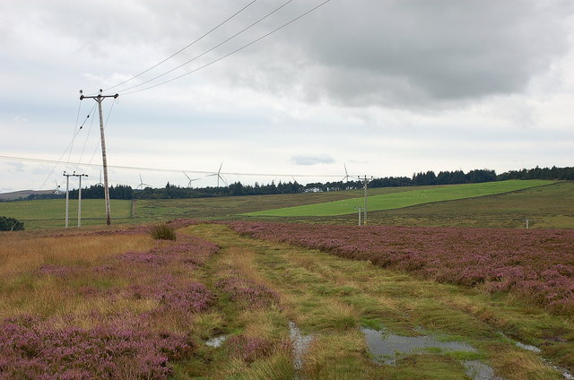Track from the Harefold, Lauder Common