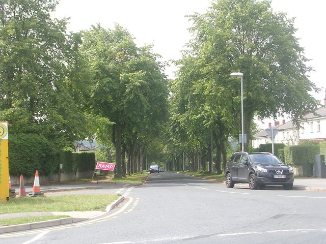 Stanhope Drive - Broadgate Lane