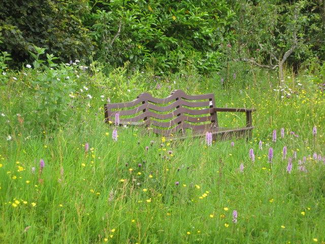 Hill House garden