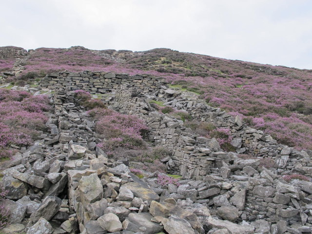 Stone structures by the central flue at the former Stanhopeburn Mine