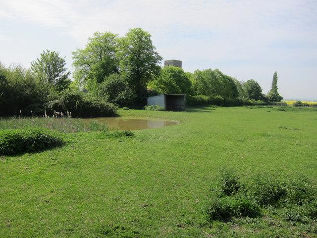 Small pond, West Wickham