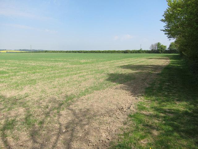 Footpath around West Wickham