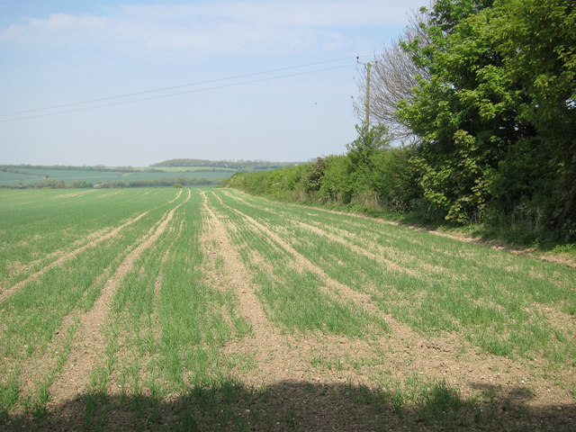 Farmland near West Wickham