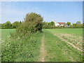 TL6149 : Footpath to West Wickham by Hugh Venables