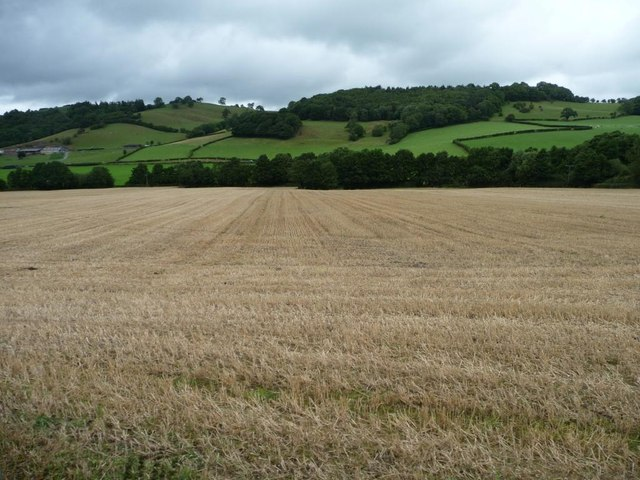 Large stubble field east of the railway
